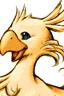 Quand perroquet chante chocobo