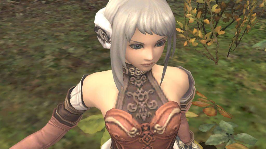 Une date pour FFXI : Seekers of Adoulin