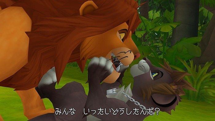 Flot d'images pour Kingdom Hearts 2.5!