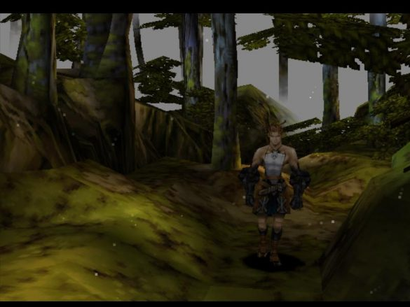 Vous vous souviendrez longtemps de la forêt des lucioles...